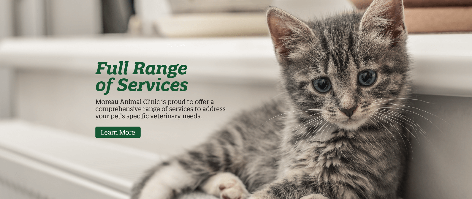 Full Range of Services
