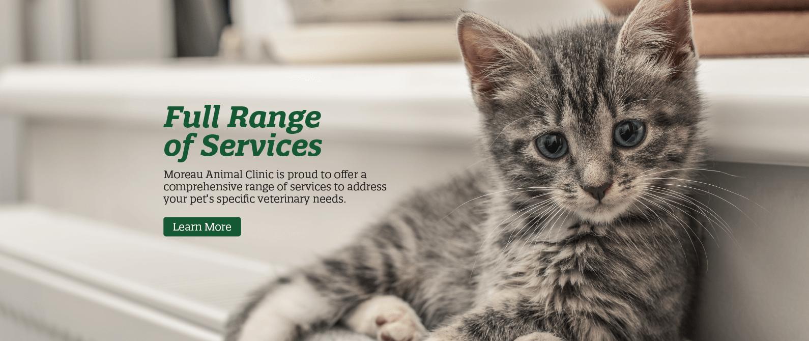 Full Range of Services